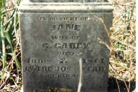 CAREY, JANE - Shelby County, Ohio | JANE CAREY - Ohio Gravestone Photos