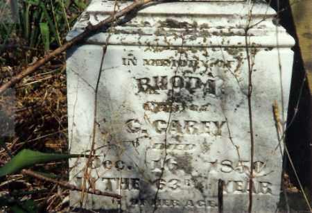 CAREY, RHODA - Shelby County, Ohio | RHODA CAREY - Ohio Gravestone Photos