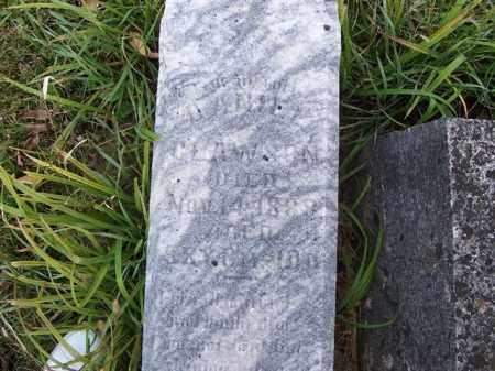 CLAWSON, DANIEL - Shelby County, Ohio | DANIEL CLAWSON - Ohio Gravestone Photos