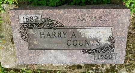 COUNTS, HARRY A. - Shelby County, Ohio | HARRY A. COUNTS - Ohio Gravestone Photos
