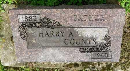 COUNTS, HARRY A. - Shelby County, Ohio | HARRY A. COUNTS - Ohio Gravestone Photos