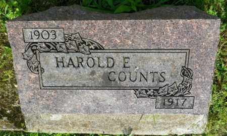 COUNTS, HAROLD E. - Shelby County, Ohio | HAROLD E. COUNTS - Ohio Gravestone Photos