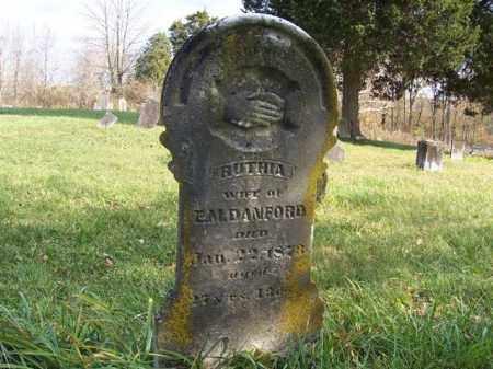 DANFORD, RUTHIA - Shelby County, Ohio | RUTHIA DANFORD - Ohio Gravestone Photos