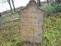 DAVIS, ELIZABETH - Shelby County, Ohio | ELIZABETH DAVIS - Ohio Gravestone Photos