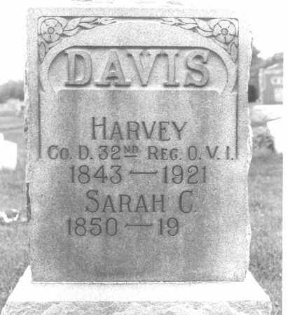 DAVIS, SARAH CATHERINE - Shelby County, Ohio | SARAH CATHERINE DAVIS - Ohio Gravestone Photos
