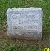 DEWEESE, CATHERINE - Shelby County, Ohio | CATHERINE DEWEESE - Ohio Gravestone Photos