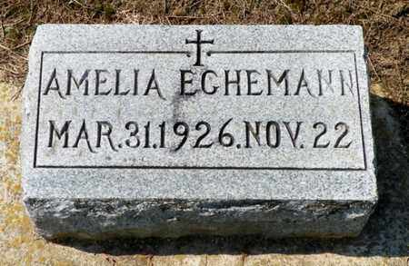 ECHEMANN, AMELIA - Shelby County, Ohio | AMELIA ECHEMANN - Ohio Gravestone Photos
