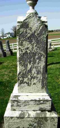 EICHER, DANIEL - Shelby County, Ohio | DANIEL EICHER - Ohio Gravestone Photos