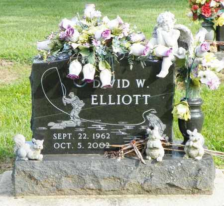 ELLIOTT, DAVID W. - Shelby County, Ohio | DAVID W. ELLIOTT - Ohio Gravestone Photos
