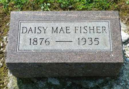FISHER, DAISY MAE - Shelby County, Ohio | DAISY MAE FISHER - Ohio Gravestone Photos