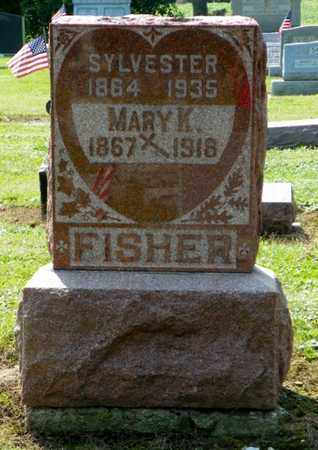 FISHER, THEODORE SYLVESTER - Shelby County, Ohio | THEODORE SYLVESTER FISHER - Ohio Gravestone Photos