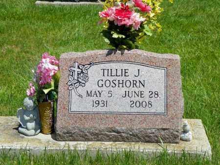 GOSHORN, TILLIE J. - Shelby County, Ohio | TILLIE J. GOSHORN - Ohio Gravestone Photos