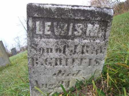 GRIFFIS, LEWIS M - Shelby County, Ohio | LEWIS M GRIFFIS - Ohio Gravestone Photos