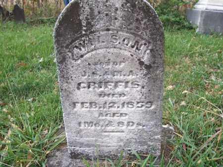 GRIFFIS, WILSON - Shelby County, Ohio | WILSON GRIFFIS - Ohio Gravestone Photos
