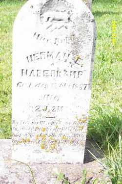 HABERKAMP, HERMAN E - Shelby County, Ohio | HERMAN E HABERKAMP - Ohio Gravestone Photos