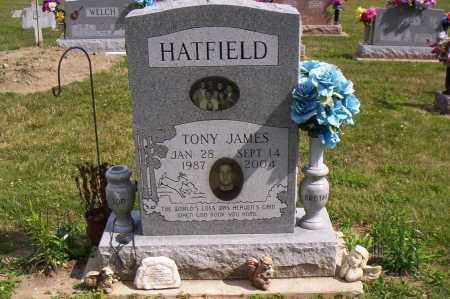 HATFIELD, TONY JAMES - Shelby County, Ohio | TONY JAMES HATFIELD - Ohio Gravestone Photos