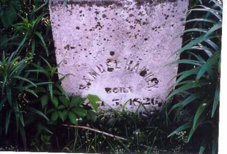 HAWKEY, SAMUEL - Shelby County, Ohio | SAMUEL HAWKEY - Ohio Gravestone Photos
