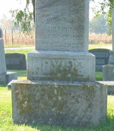 HOYING, JOHANN A. - Shelby County, Ohio | JOHANN A. HOYING - Ohio Gravestone Photos