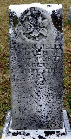 JELLY, ELIZA A. - Shelby County, Ohio | ELIZA A. JELLY - Ohio Gravestone Photos