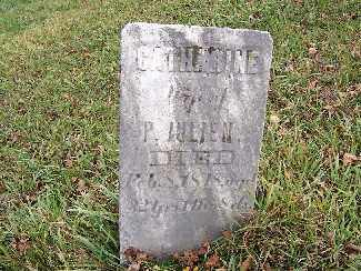 JULIEN, CATHERINE - Shelby County, Ohio | CATHERINE JULIEN - Ohio Gravestone Photos