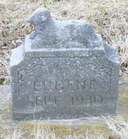 LAUGHLIN, EUGENE - Shelby County, Ohio | EUGENE LAUGHLIN - Ohio Gravestone Photos
