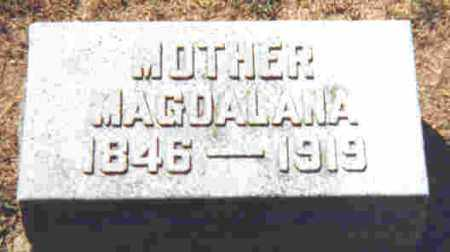 REINHART LENHART, MAGDALANA D. - Shelby County, Ohio | MAGDALANA D. REINHART LENHART - Ohio Gravestone Photos
