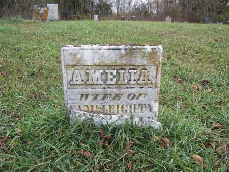 LEIGHTY, AMELIA - Shelby County, Ohio | AMELIA LEIGHTY - Ohio Gravestone Photos