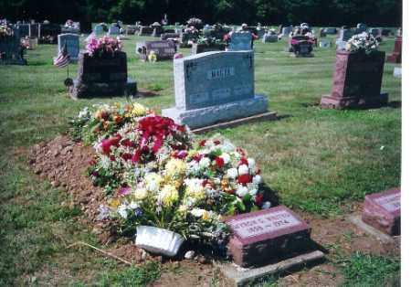 MAGEE, GEORGE - Shelby County, Ohio   GEORGE MAGEE - Ohio Gravestone Photos