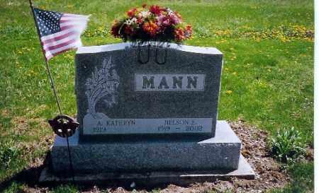 MANN, NELSON E. - Shelby County, Ohio | NELSON E. MANN - Ohio Gravestone Photos