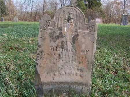 MCCLURE, ESTHER - Shelby County, Ohio   ESTHER MCCLURE - Ohio Gravestone Photos