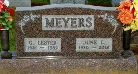 MEYERS, C. LESTER - Shelby County, Ohio | C. LESTER MEYERS - Ohio Gravestone Photos