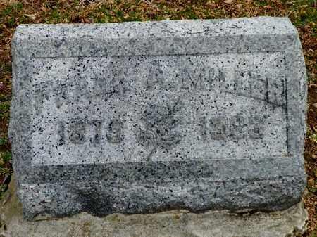 MILLER, FRANK - Shelby County, Ohio | FRANK MILLER - Ohio Gravestone Photos