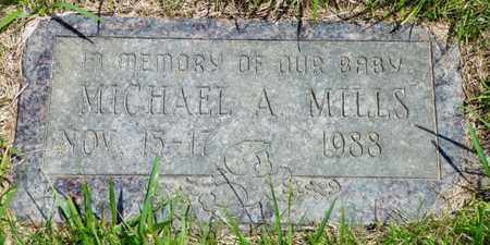 MILLS, MICHAEL A. - Shelby County, Ohio | MICHAEL A. MILLS - Ohio Gravestone Photos