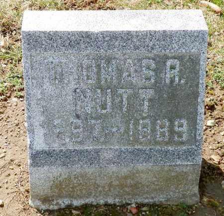 NUTT, THOMAS R. - Shelby County, Ohio | THOMAS R. NUTT - Ohio Gravestone Photos