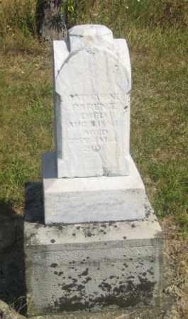 PARENT, CATHERINE - Shelby County, Ohio | CATHERINE PARENT - Ohio Gravestone Photos