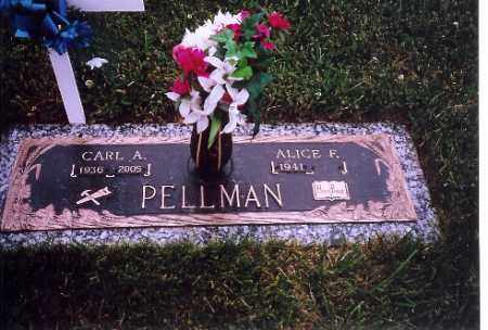 PELLMAN, ALICE F. - Shelby County, Ohio | ALICE F. PELLMAN - Ohio Gravestone Photos
