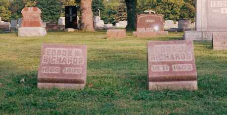 RICHARDS, EDSON - Shelby County, Ohio | EDSON RICHARDS - Ohio Gravestone Photos