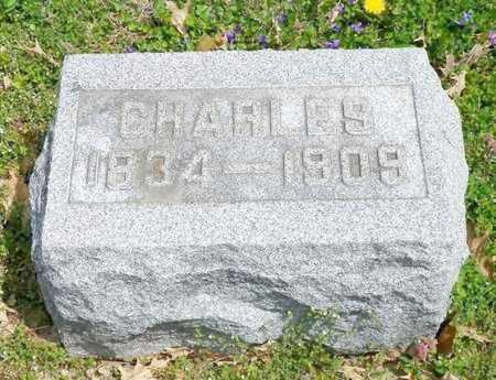 RITCHIE, CHARLES - Shelby County, Ohio | CHARLES RITCHIE - Ohio Gravestone Photos