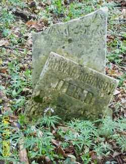 ROBERSON, HANNA - Shelby County, Ohio | HANNA ROBERSON - Ohio Gravestone Photos