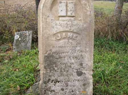 SAVAGE, JANE - Shelby County, Ohio | JANE SAVAGE - Ohio Gravestone Photos
