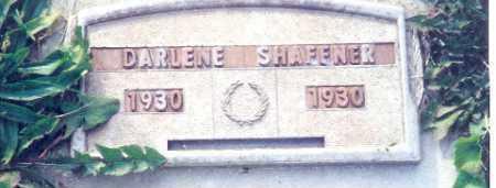SHAFFNER, DARLENE - Shelby County, Ohio | DARLENE SHAFFNER - Ohio Gravestone Photos