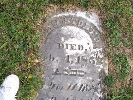 STOKER, JOHN - Shelby County, Ohio | JOHN STOKER - Ohio Gravestone Photos