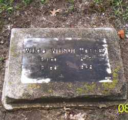 TENNEY, WILDA WILSON - Shelby County, Ohio | WILDA WILSON TENNEY - Ohio Gravestone Photos