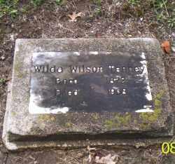 TENNEY, WILDA WILSON - Shelby County, Ohio | WILDA WILSON TENNEY - Ohio Gravestone Photos