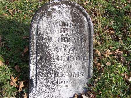 THWAITS, SARAH N - Shelby County, Ohio | SARAH N THWAITS - Ohio Gravestone Photos