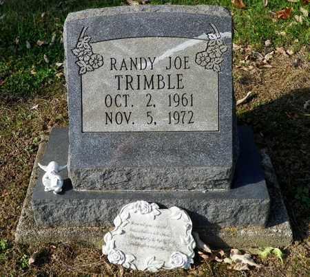 TRIMBLE, RANDY JOE - Shelby County, Ohio | RANDY JOE TRIMBLE - Ohio Gravestone Photos