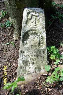WAGNER, MARGARET ADELMA - Shelby County, Ohio | MARGARET ADELMA WAGNER - Ohio Gravestone Photos