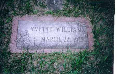 WILLIAMS, YVETTE - Shelby County, Ohio | YVETTE WILLIAMS - Ohio Gravestone Photos