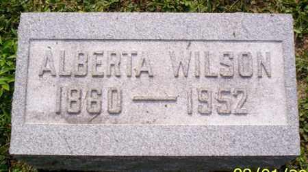 WILSON, ALBERTA - Shelby County, Ohio | ALBERTA WILSON - Ohio Gravestone Photos