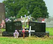 WILSON, LESTER O. - Shelby County, Ohio | LESTER O. WILSON - Ohio Gravestone Photos